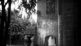 A girl stands on crumbling stairs attached to the ruin of a church. The church is surrounded by trees and bathed in sunlight.