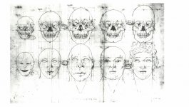 An illustration of skulls and human faces.