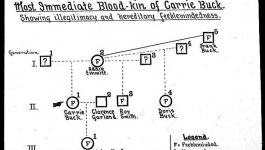 """A pedigree chart displaying three generations of family history for Carrie Buck, marked to show """"feebleminded"""" or """"illegitimate mating."""""""