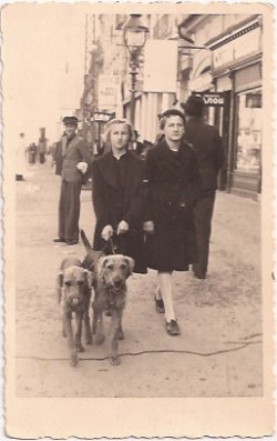 Photograph of Holocaust survivor Ava Kadishson Schieber (age 11) with friend and dogs circa 1937.