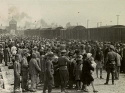 Crowds of people boarding a train.