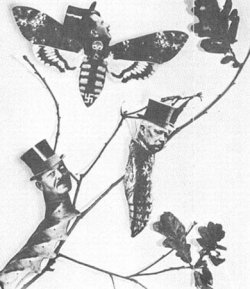 A piece of art combining German politicians' faces (President Friedrich Ebert to Paul von Hindenburg to Adolf Hitler) with pictures showing the metamorphosis stages of the butterfly.