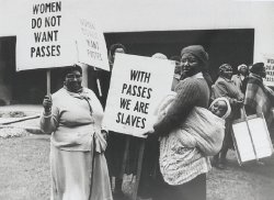"""Group of black South African women protesting and carrying signs that say """"Women do not want passes"""" and """"With passes we are slaves"""