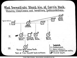 pedigree chart for the carrie buck family facing history and ourselves