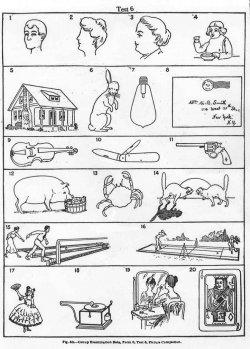 A picture-based intelligence test where each picture has a part missing. For example, a rabbit missing an ear.