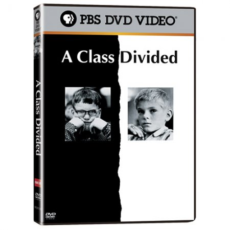 a class devided Psychology essays: a class divided a class divided this essay a class divided and other 63,000+ term papers, college essay examples and free essays are available now on reviewessayscom.